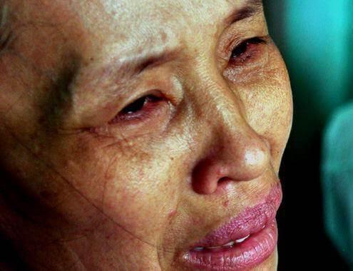 Du học Nhật Bản khóc cho một kiếp người - Lá vàng rơi tiễn lá xanh