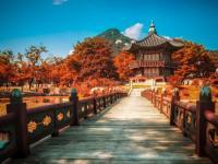 Lý do nào khiến bạn nên lựa chọn du học Hàn Quốc mùa thu
