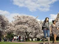 Cập nhật điều kiện đi du học Hàn Quốc 2018