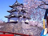 Du học Nhật Bản miễn phí thực tế là gì?