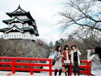 Du học Nhật Bản nên chọn ngành nào để sau không phải hối hận