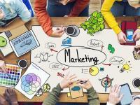 Du học Nhật Bản ngành Marketing: Chọn trường nào?