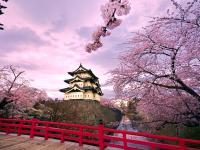 Những Ưu Điểm Khi Du Học Tại Nhật Bản