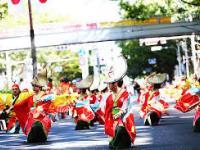 Tham gia lễ hội tiếng Nhật để cùng tìm hiểu văn hóa