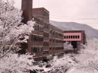 Du học Hàn Quốc vào mùa đông – Nên hay không nên?