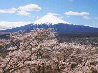 Tuyển Du Học Sinh Nhật Bản
