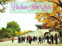 Hướng dẫn CHI TIẾT quy trình du học Hàn Quốc